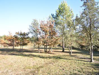 terrain à Soustons (40)