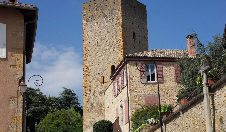 Terrain Saint-Cyr-au-Mont-d'Or