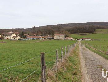 terrain à Neuville-sur-Ain (01)
