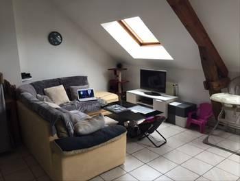 Appartement 3 pièces 48,66 m2