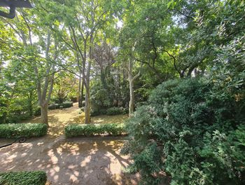 terrain à Montfavet (84)