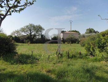 terrain à Sainte-Cécile-les-Vignes (84)