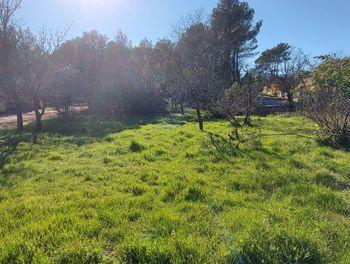 terrain à Rocbaron (83)