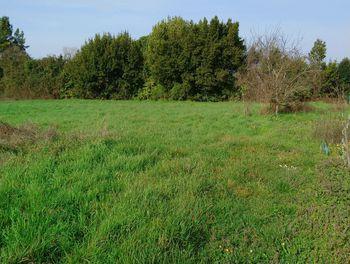 terrain à Lugon-et-l'Ile-du-Carney (33)