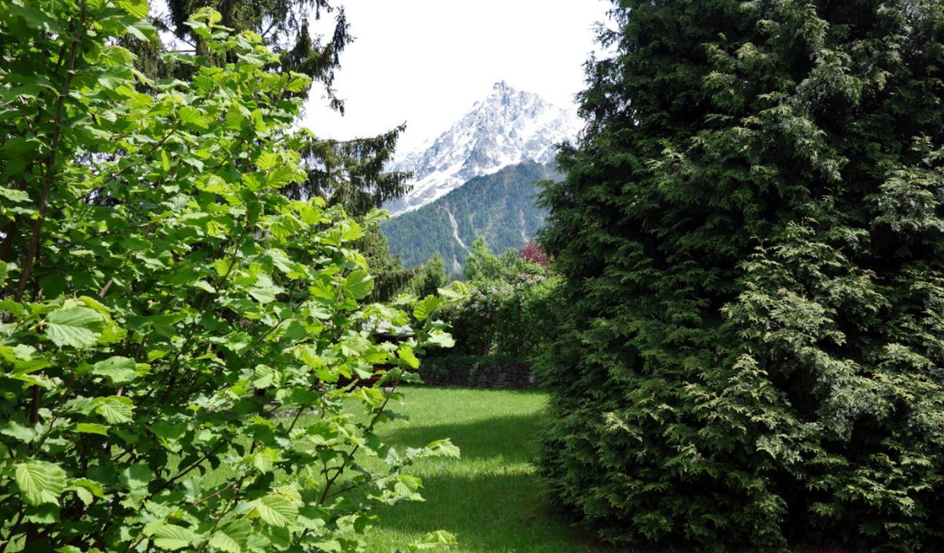 Terrain Les Houches