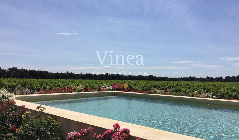 Vineyard with pool Avignon