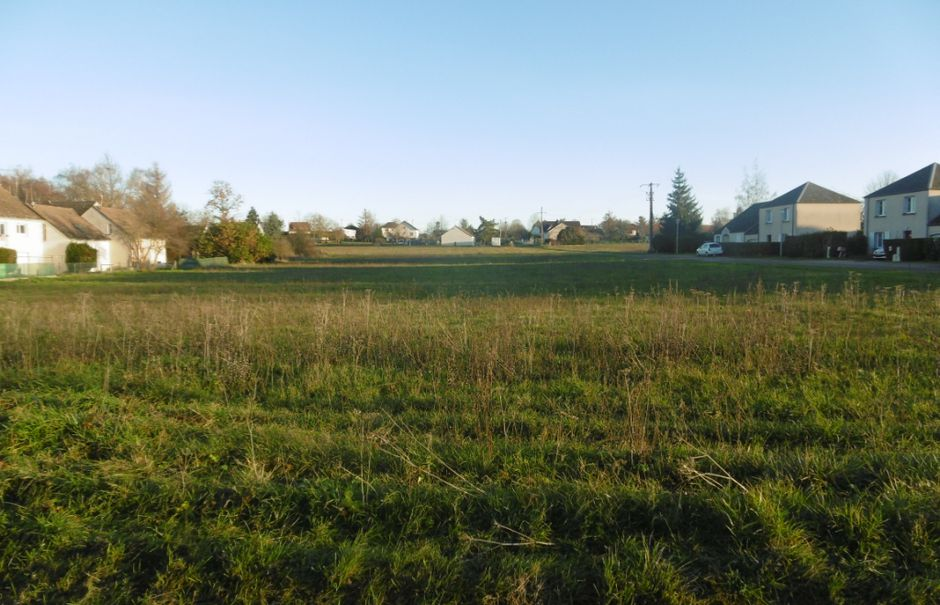 Vente terrain  5487 m² à Montbouy (45230), 60 000 €