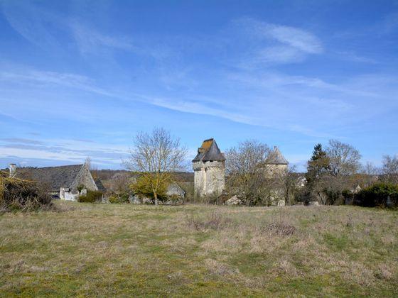 Vente château 10 pièces 300 m2