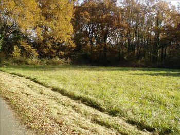 terrain à Montguyon (17)