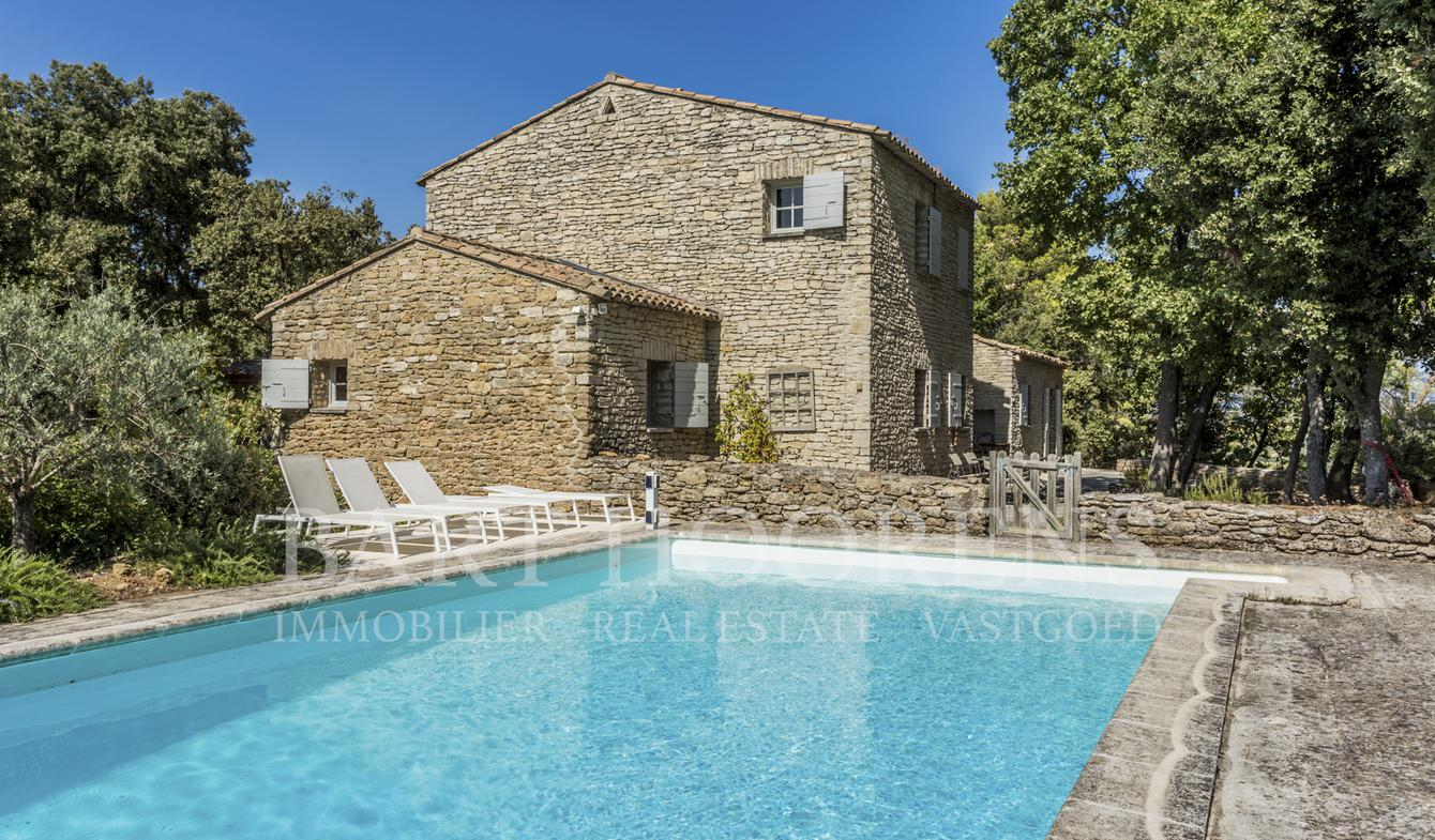House with pool and garden Ménerbes