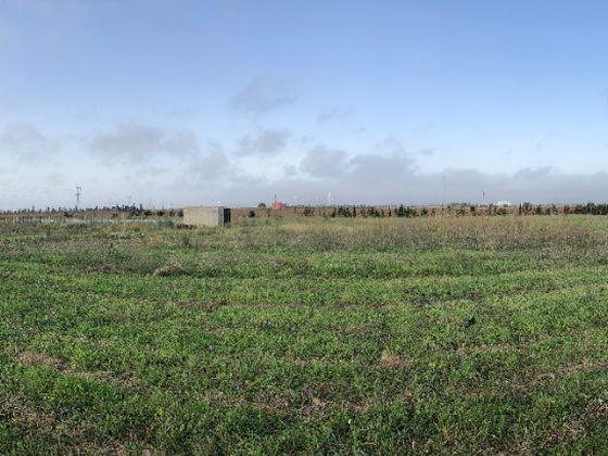 Vente terrain 15000 m2