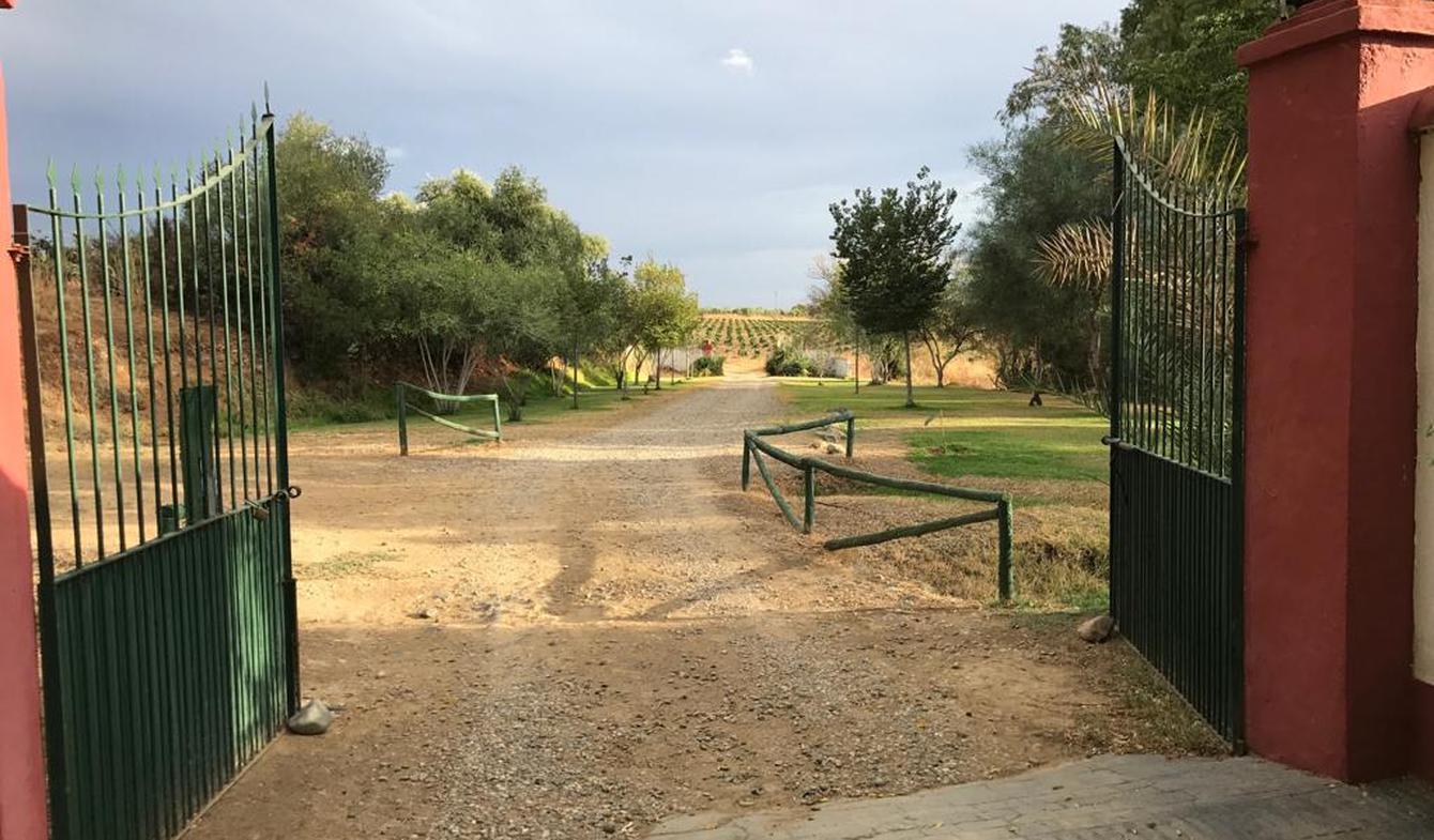Propriété avec piscine et jardin Burguillos
