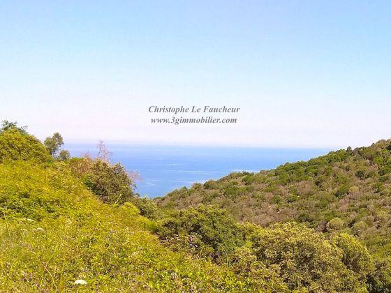 Vente De Terrains En Corse Terrain A Vendre