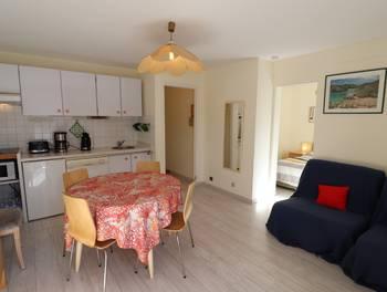 Appartement 2 pièces 29,08 m2