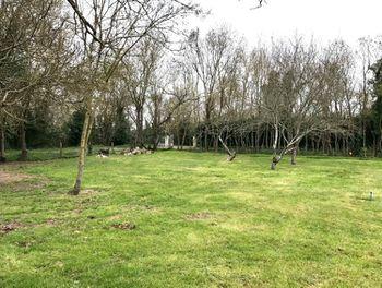 terrain à Saint-laurent-de-la-pree (17)