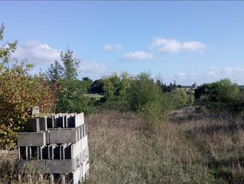 terrain à Saint-Maigrin (17)