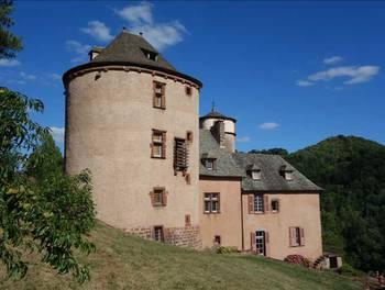 Château 14 pièces 450 m2