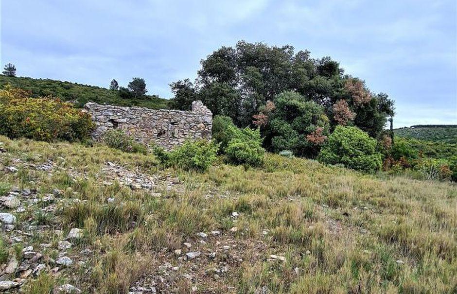 Vente terrain  127000 m² à Fontjoncouse (11360), 55 000 €