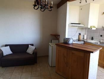 Appartement meublé 2 pièces 40,87 m2