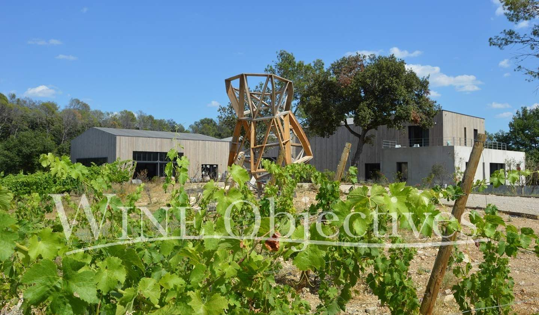 Vineyard Montpellier