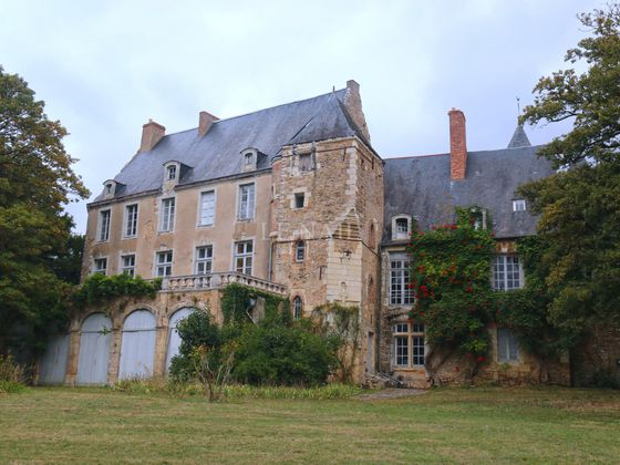 Vente château 15 pièces 400 m2