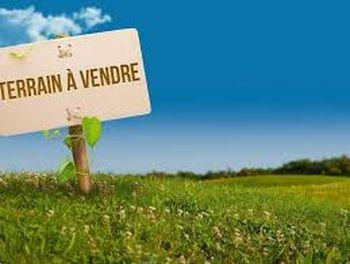 terrain à Vedène (84)