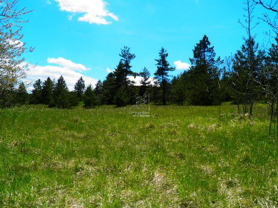 Vente terrain 1561 m2