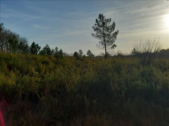 Vente terrain 1207 m2