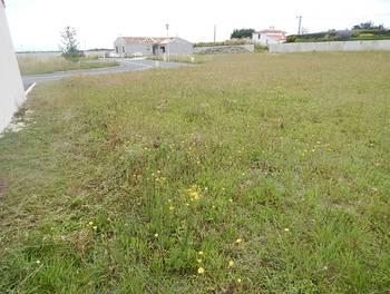 Terrain 556 m2