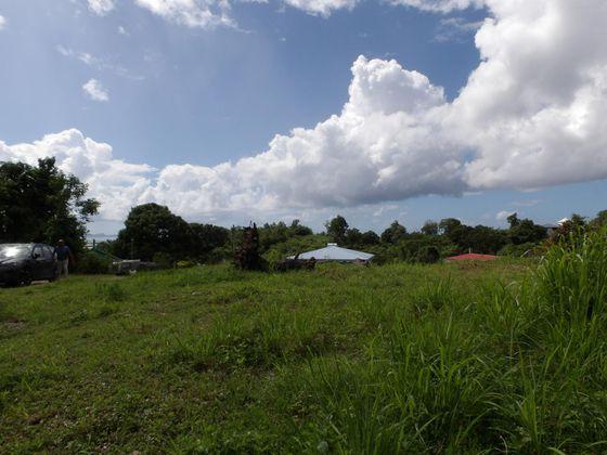 Vente terrain 1003 m2