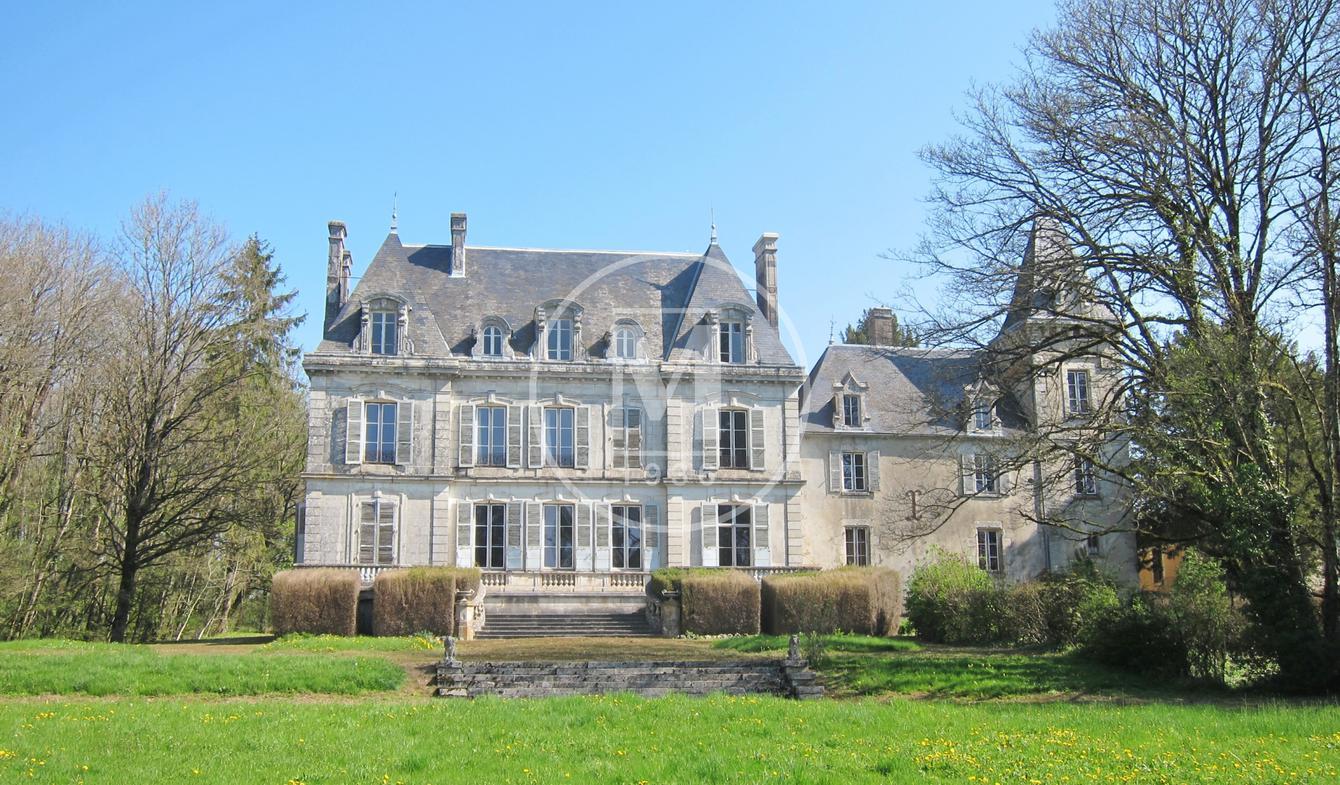 Château Saint-Sauveur-en-Puisaye