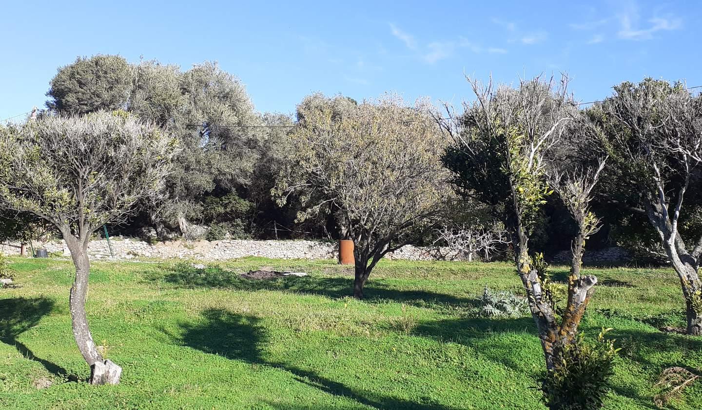 Propriété en bord de mer avec jardin Lumio
