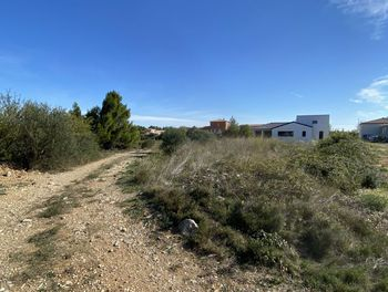 terrain à La Palme (11)