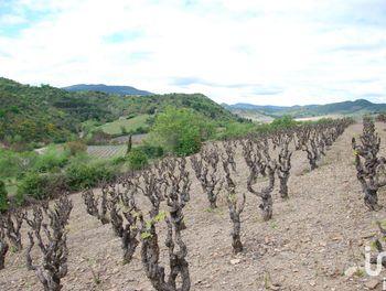 terrain à Villeneuve-les-Corbières (11)