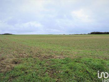 terrain à Ferrières-en-Gâtinais (45)