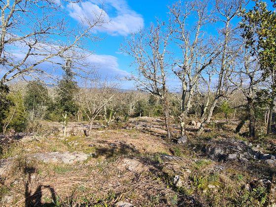 Vente terrain 2564 m2