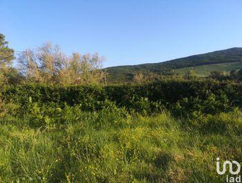 terrain à Luri (2B)