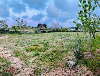 terrain à Plurien (22)