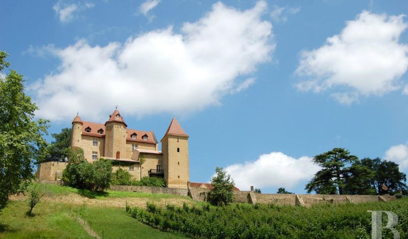 Propriété viticole Pau