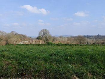 terrain à Le Cloître-Pleyben (29)