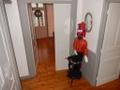 Maison 8 pièces 180m² Brest