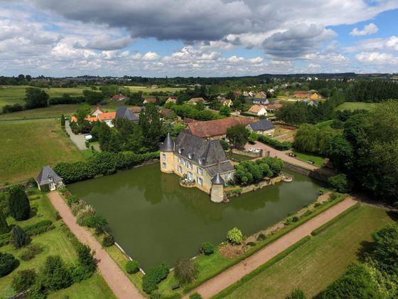 Vente château 16 pièces 520 m2