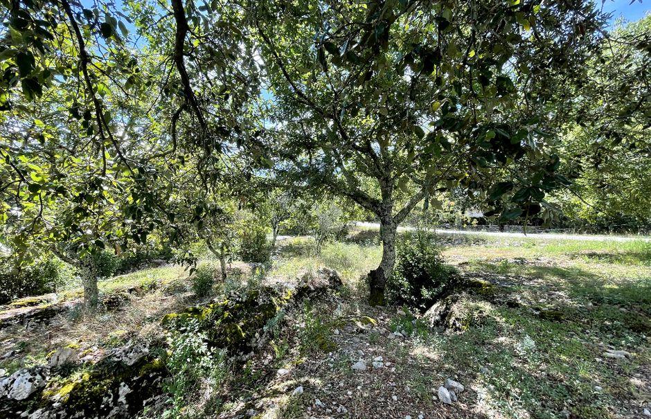 Vente terrain  1550 m² à Ruoms (07120), 77 000 €