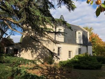 Château 8 pièces 250 m2