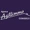 AGENCE AGILLIMMO CONSEILS