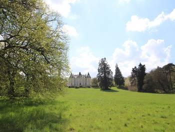 Château 14 pièces 600 m2