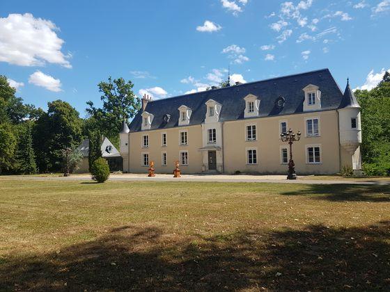 Vente château 20 pièces 950 m2