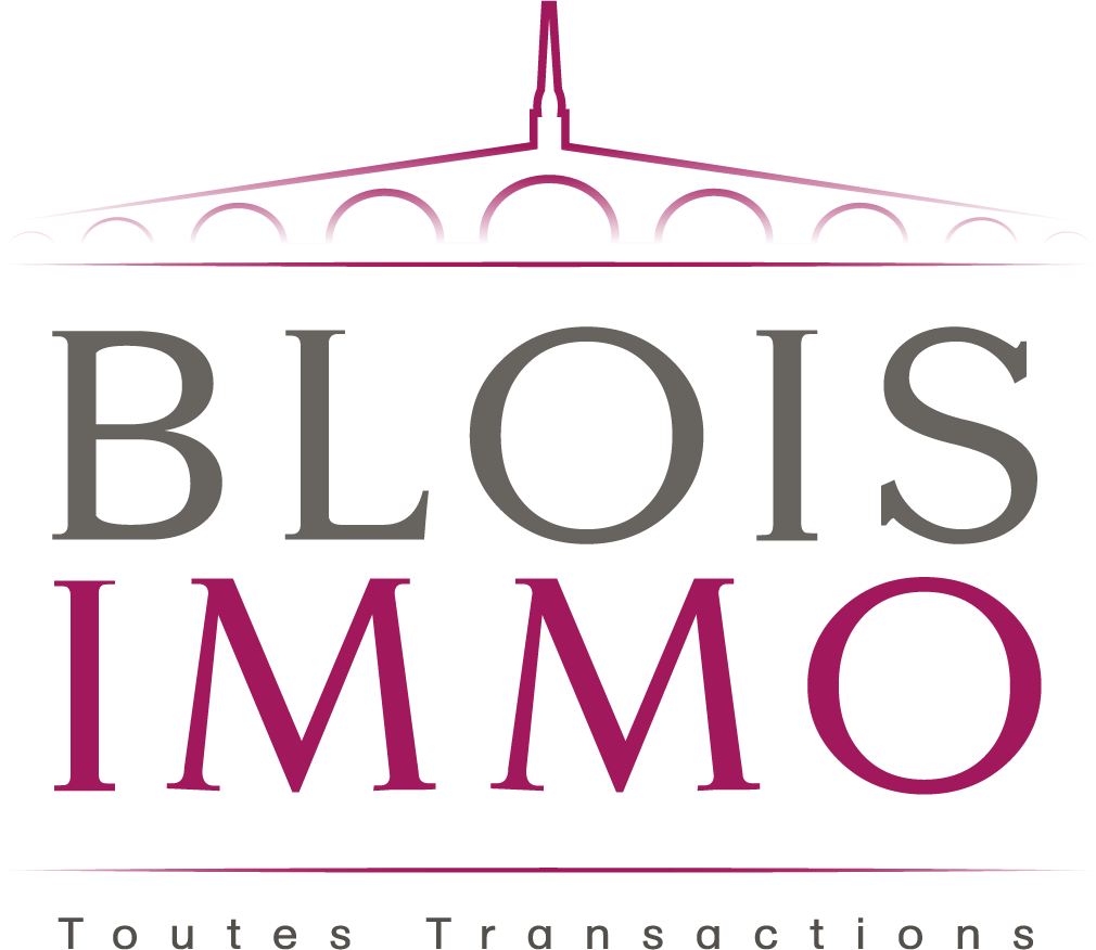 Logo de BLOIS IMMOBILIER