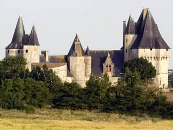 Château 22 pièces 700 m2