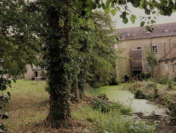 moulin à Mettray (37)
